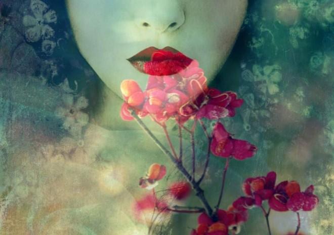 alaya-elizabeth-crimson-flower