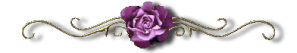 purple-rose-divider